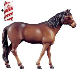 Horse brown + Gift box